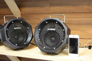 Акустическая система Yamaha RDX-B11