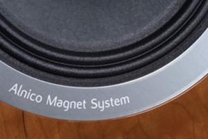 Акустическая система Tannoy Definition DC10A и магнитная система Alnico
